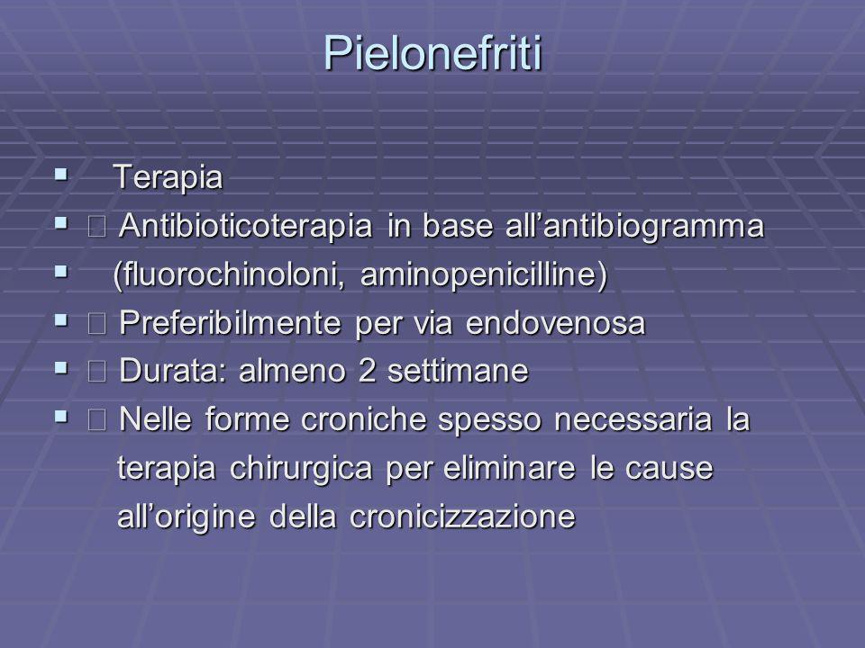 Pielonefriti Terapia Terapia Antibioticoterapia in base allantibiogramma Antibioticoterapia in base allantibiogramma (fluorochinoloni, aminopenicillin