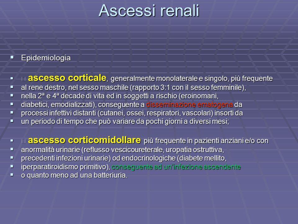 Ascessi renali Epidemiologia Epidemiologia ascesso corticale, generalmente monolaterale e singolo, più frequente ascesso corticale, generalmente monol