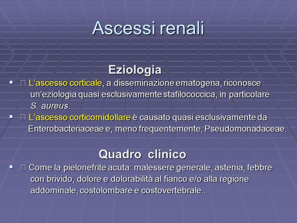 Ascessi renali Eziologia Eziologia Lascesso corticale, a disseminazione ematogena, riconosce Lascesso corticale, a disseminazione ematogena, riconosce
