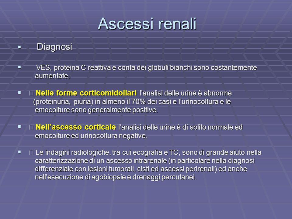 Ascessi renali Diagnosi Diagnosi VES, proteina C reattiva e conta dei globuli bianchi sono costantemente VES, proteina C reattiva e conta dei globuli