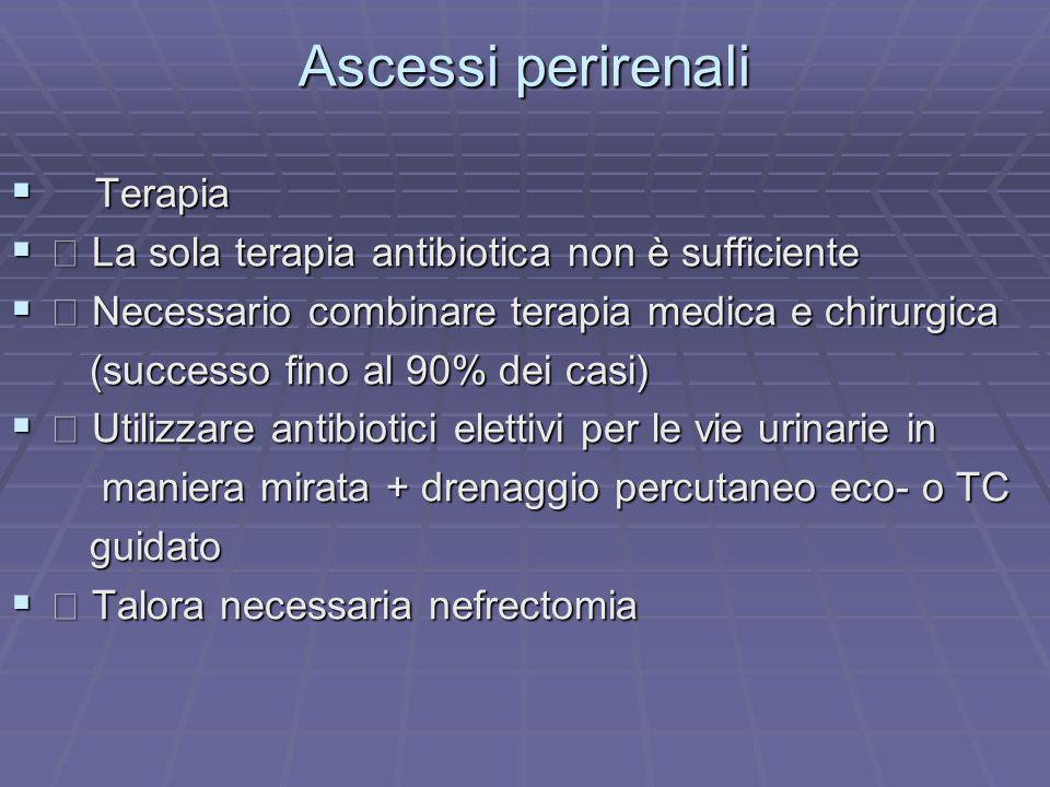 Ascessi perirenali Terapia Terapia La sola terapia antibiotica non è sufficiente La sola terapia antibiotica non è sufficiente Necessario combinare te