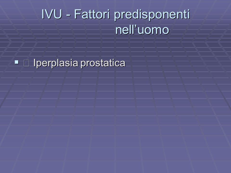IVU - Fattori predisponenti nelluomo Iperplasia prostatica Iperplasia prostatica