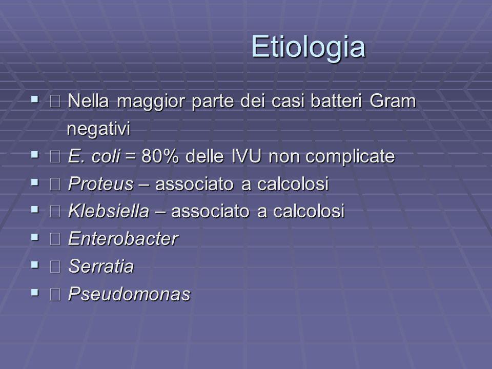 Etiologia Etiologia Nella maggior parte dei casi batteri Gram Nella maggior parte dei casi batteri Gram negativi negativi E. coli = 80% delle IVU non