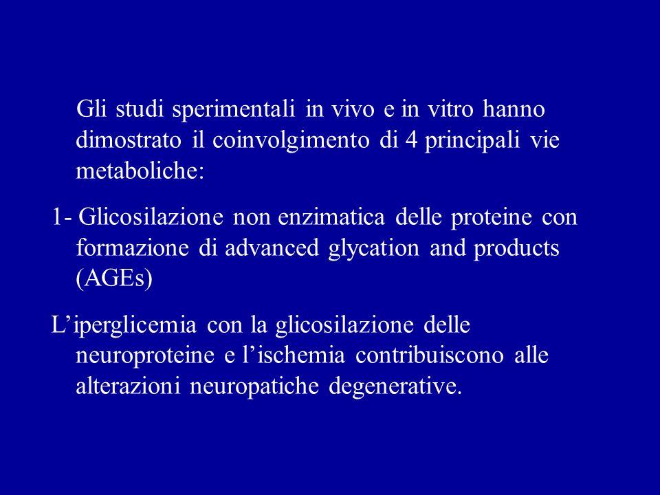 Gli studi sperimentali in vivo e in vitro hanno dimostrato il coinvolgimento di 4 principali vie metaboliche: 1- Glicosilazione non enzimatica delle p