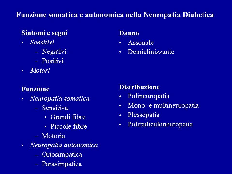 Sintomi e segni Sensitivi – Negativi – Positivi Motori Funzione Neuropatia somatica – Sensitiva Grandi fibre Piccole fibre – Motoria Neuropatia autono