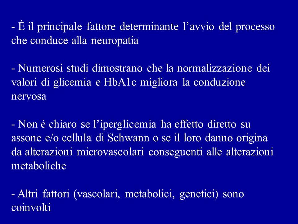 IPOTESI UNITARIA Ognuna delle vie metaboliche è perturbata come conseguenza diretta o indiretta della produzione eccessiva di superossidi di origine mitocondriale, indotta dalliperglicemia.