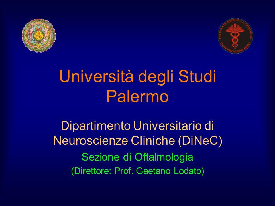Università degli Studi Palermo Dipartimento Universitario di Neuroscienze Cliniche (DiNeC) Sezione di Oftalmologia (Direttore: Prof. Gaetano Lodato)
