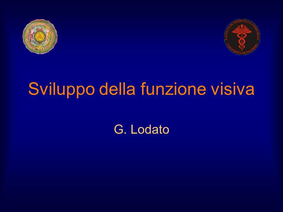 Sviluppo della funzione visiva G. Lodato