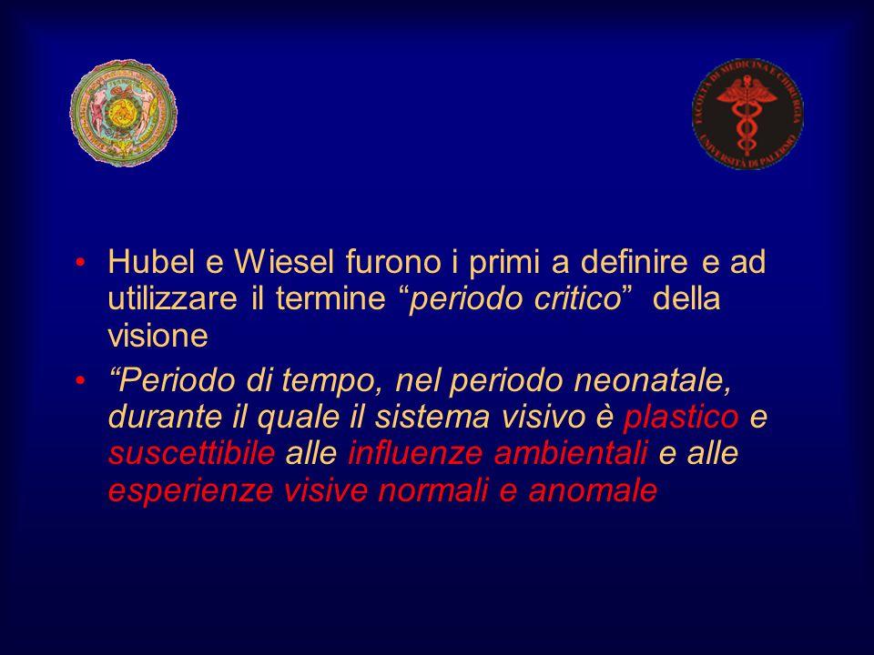 Hubel e Wiesel furono i primi a definire e ad utilizzare il termine periodo critico della visione Periodo di tempo, nel periodo neonatale, durante il
