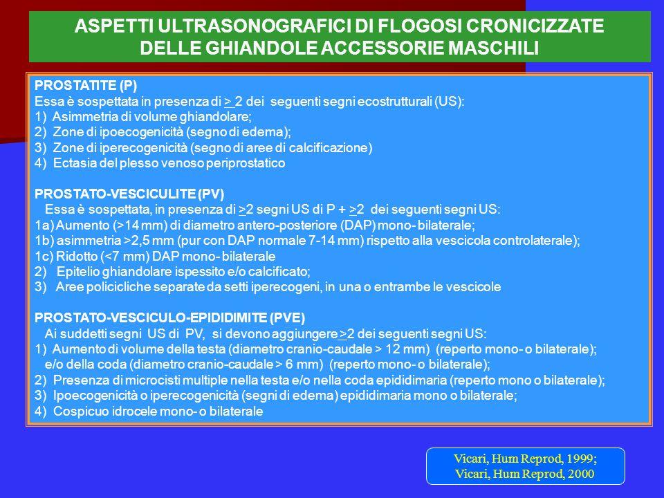 ASPETTI ULTRASONOGRAFICI DI FLOGOSI CRONICIZZATE DELLE GHIANDOLE ACCESSORIE MASCHILI PROSTATITE (P) Essa è sospettata in presenza di > 2 dei seguenti