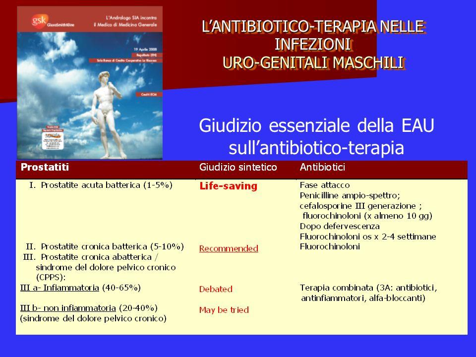 LANTIBIOTICO-TERAPIA NELLE INFEZIONI URO-GENITALI MASCHILI Giudizio essenziale della EAU sullantibiotico-terapia
