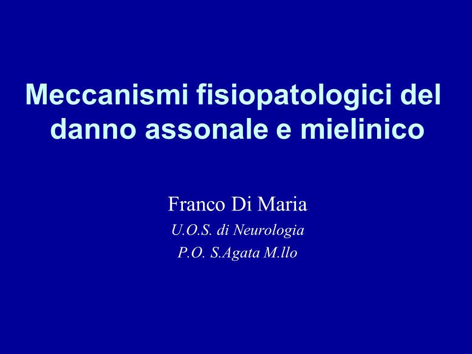 Meccanismi fisiopatologici del danno assonale e mielinico Franco Di Maria U.O.S. di Neurologia P.O. S.Agata M.llo