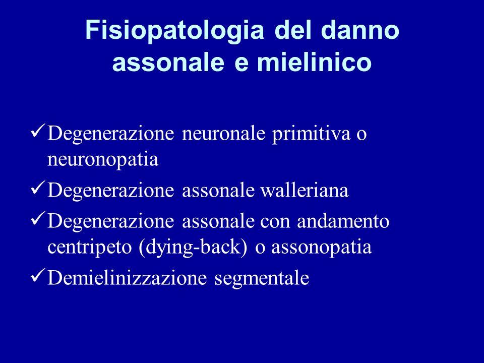 Fisiopatologia del danno assonale e mielinico Degenerazione neuronale primitiva o neuronopatia Degenerazione assonale walleriana Degenerazione assonal