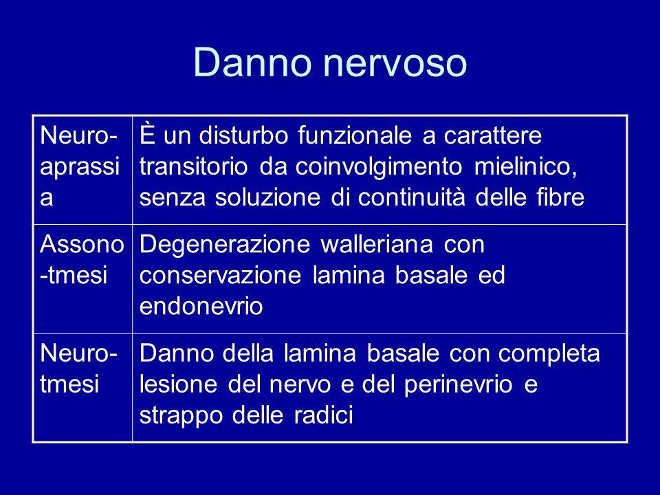Danno nervoso Neuro- aprassi a È un disturbo funzionale a carattere transitorio da coinvolgimento mielinico, senza soluzione di continuità delle fibre