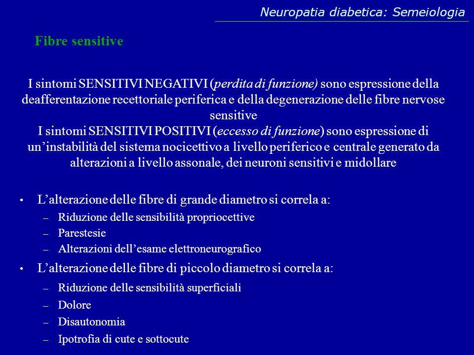 Fibre sensitive Lalterazione delle fibre di grande diametro si correla a: – Riduzione delle sensibilità propriocettive – Parestesie – Alterazioni dell