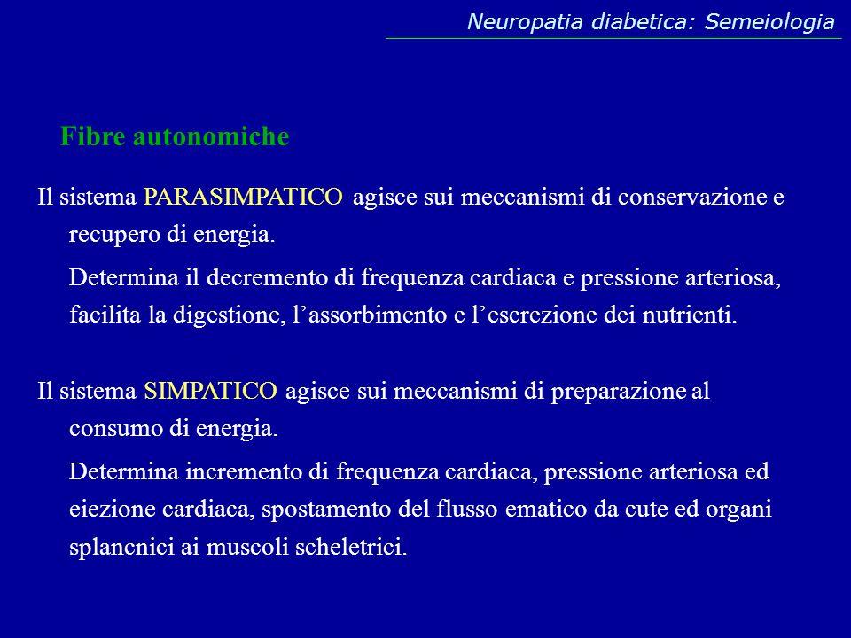 Fibre autonomiche Il sistema PARASIMPATICO agisce sui meccanismi di conservazione e recupero di energia. Determina il decremento di frequenza cardiaca