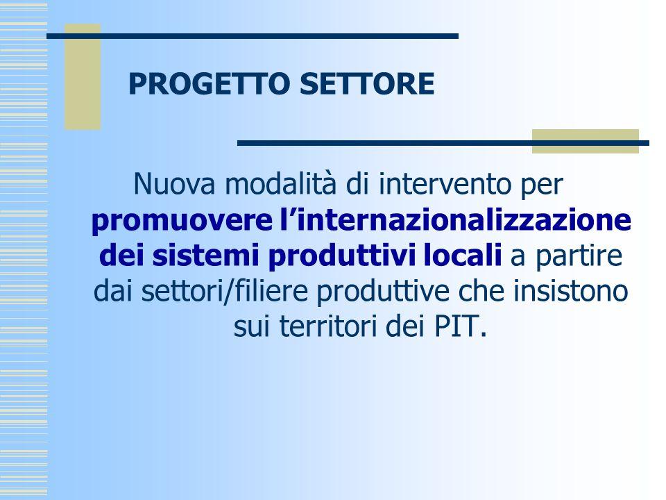 PROGETTO SETTORE Nuova modalità di intervento per promuovere linternazionalizzazione dei sistemi produttivi locali a partire dai settori/filiere produttive che insistono sui territori dei PIT.