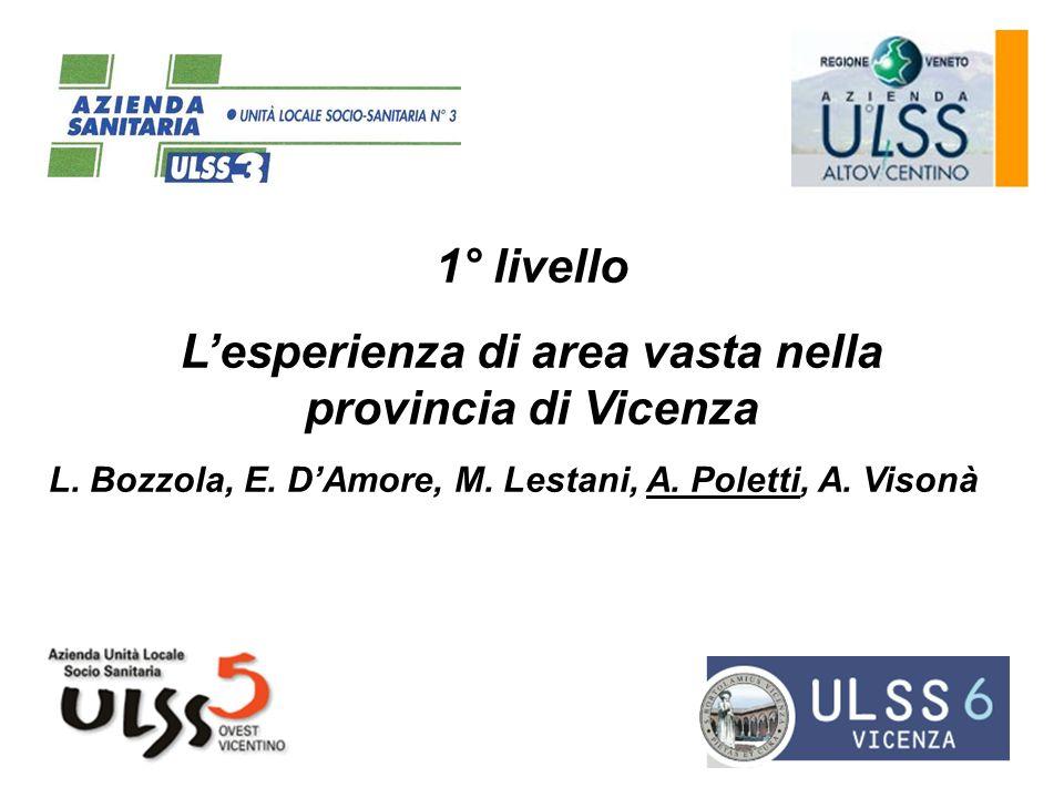 1° livello Lesperienza di area vasta nella provincia di Vicenza L. Bozzola, E. DAmore, M. Lestani, A. Poletti, A. Visonà