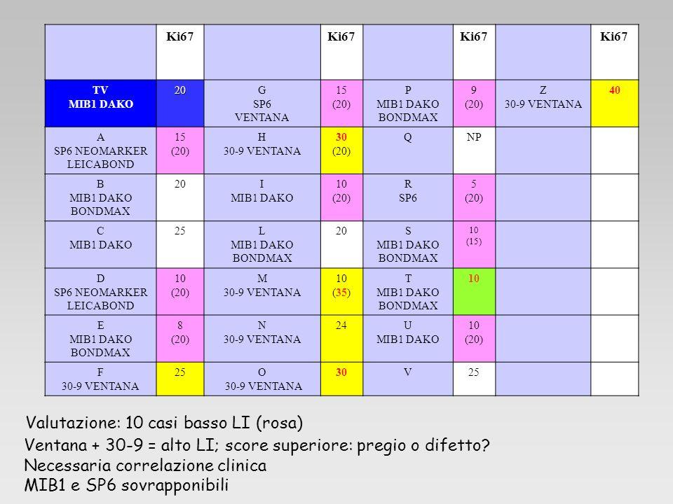Ki67 TV MIB1 DAKO20G SP6 VENTANA 15 (20) P MIB1 DAKO BONDMAX 9 (20) Z 30-9 VENTANA 40 A SP6 NEOMARKER LEICABOND 15 (20) H 30-9 VENTANA 30 (20) QNP B M
