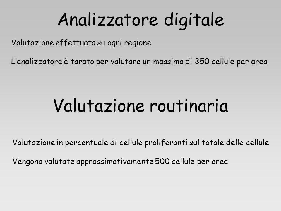 Analizzatore digitale Valutazione effettuata su ogni regione Lanalizzatore è tarato per valutare un massimo di 350 cellule per area Valutazione routin