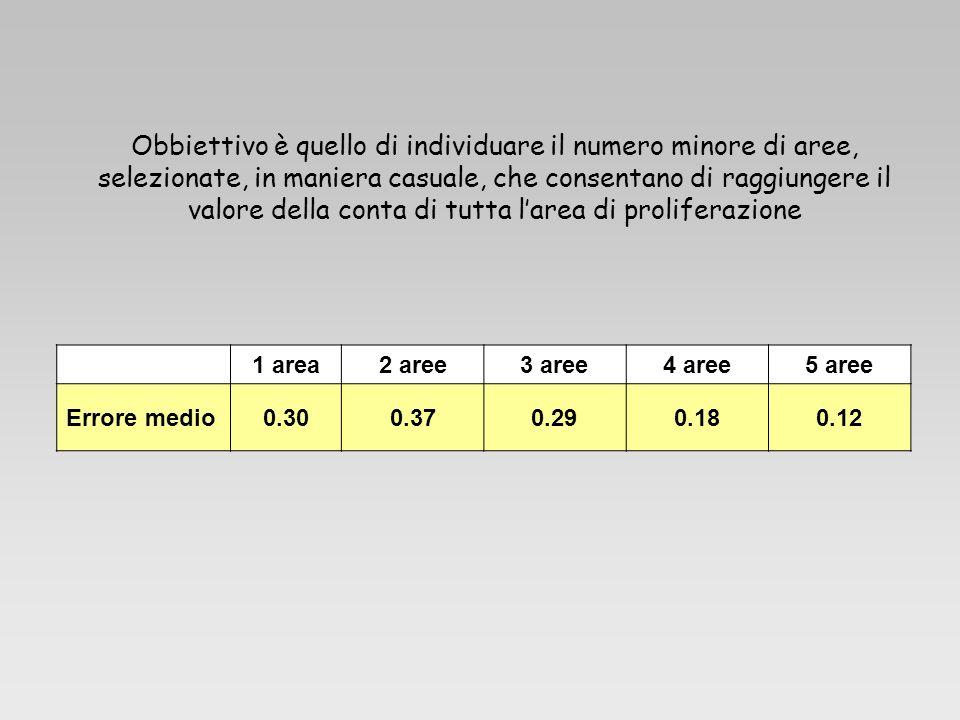 1 area2 aree3 aree4 aree5 aree Errore medio0.300.370.290.180.12 Obbiettivo è quello di individuare il numero minore di aree, selezionate, in maniera c