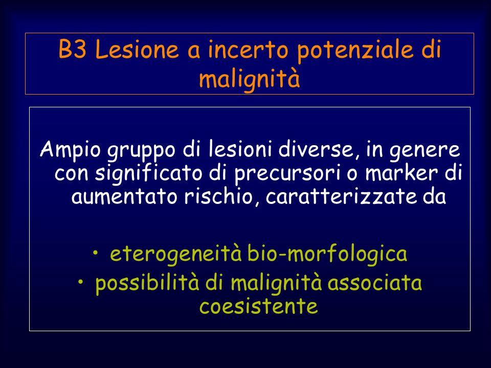 Ampio gruppo di lesioni diverse, in genere con significato di precursori o marker di aumentato rischio, caratterizzate da eterogeneità bio-morfologica