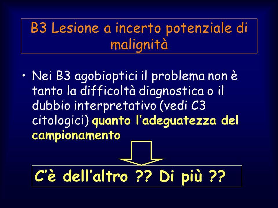 Nei B3 agobioptici il problema non è tanto la difficoltà diagnostica o il dubbio interpretativo (vedi C3 citologici) quanto ladeguatezza del campionam