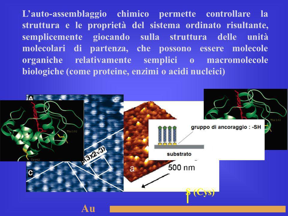 Lauto-assemblaggio chimico permette controllare la struttura e le proprietà del sistema ordinato risultante, semplicemente giocando sulla struttura de