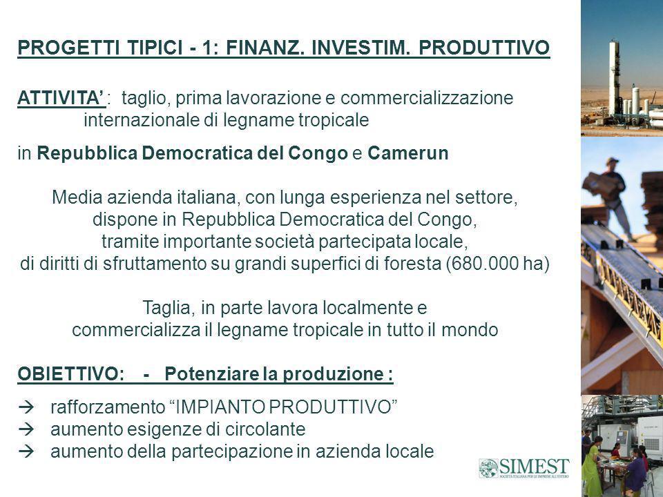 PROGETTI TIPICI - 1: FINANZ.INVESTIM.