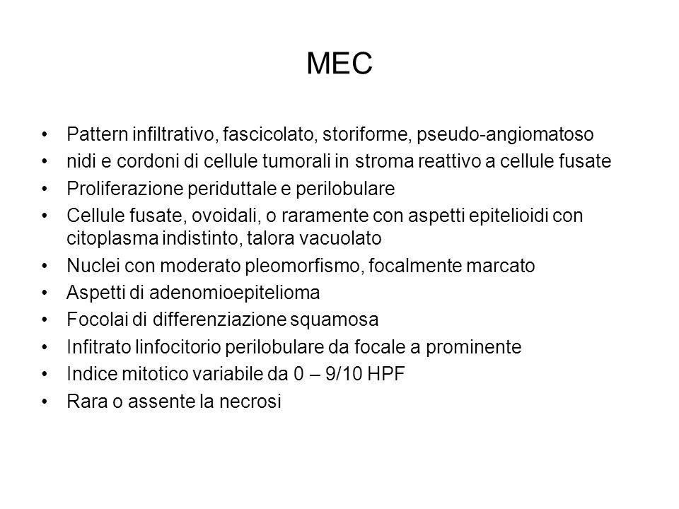 MEC Pattern infiltrativo, fascicolato, storiforme, pseudo-angiomatoso nidi e cordoni di cellule tumorali in stroma reattivo a cellule fusate Prolifera