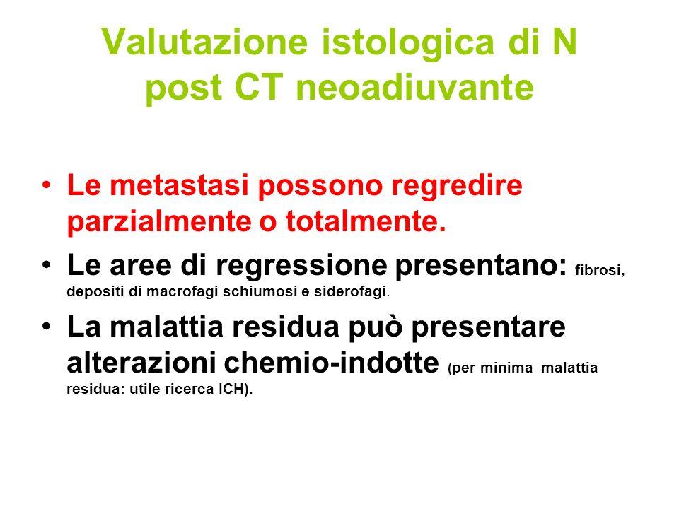Valutazione istologica di N post CT neoadiuvante Le metastasi possono regredire parzialmente o totalmente.