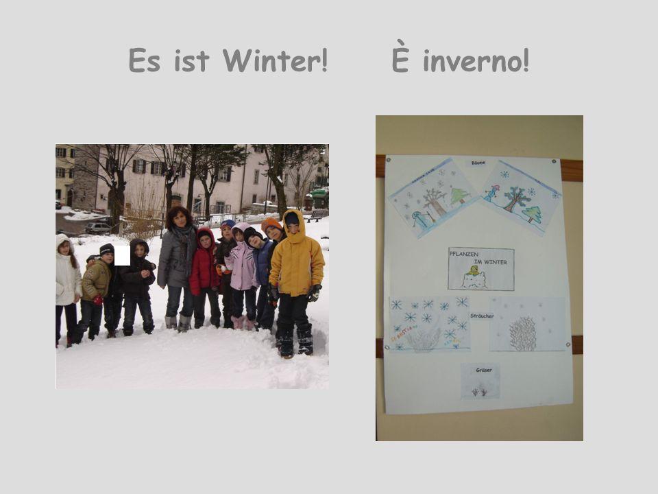 Es ist Winter!È inverno!