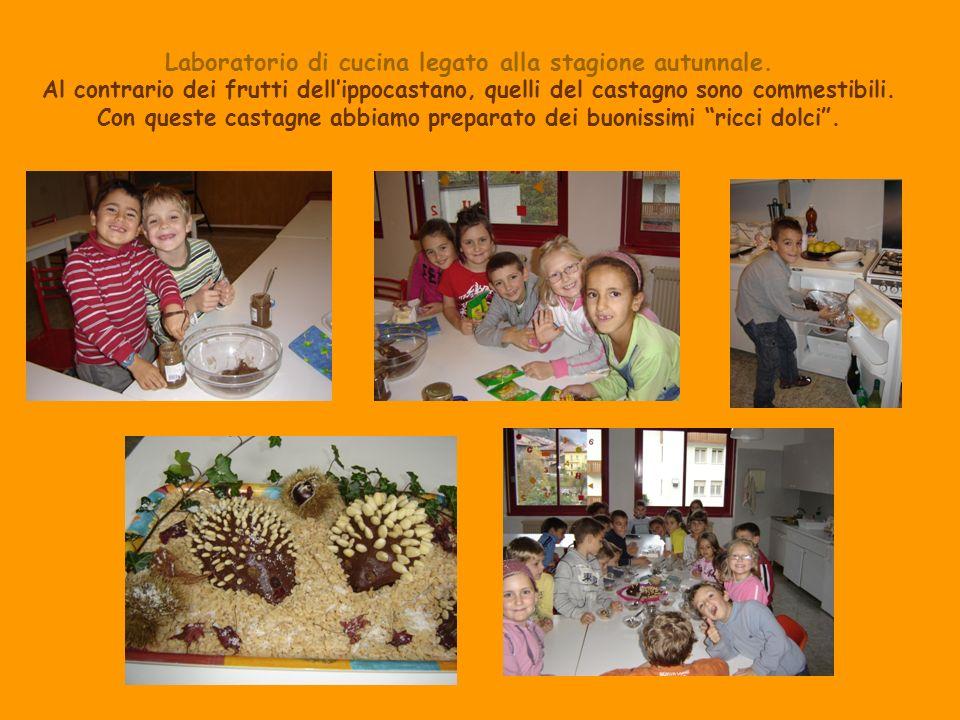 Laboratorio di cucina legato alla stagione autunnale. Al contrario dei frutti dellippocastano, quelli del castagno sono commestibili. Con queste casta