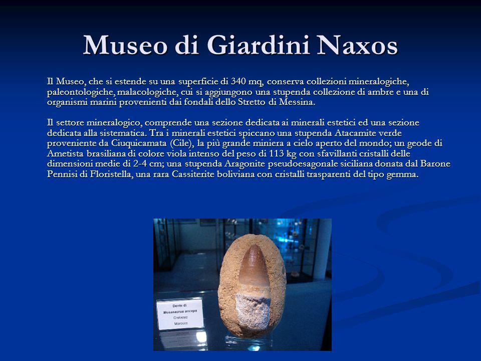 Museo di Giardini Naxos Il Museo, che si estende su una superficie di 340 mq, conserva collezioni mineralogiche, paleontologiche, malacologiche, cui s