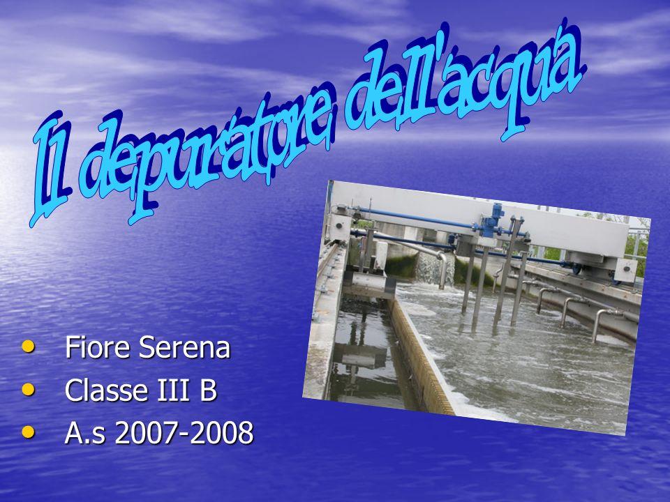 Fiore Serena Fiore Serena Classe III B Classe III B A.s 2007-2008 A.s 2007-2008