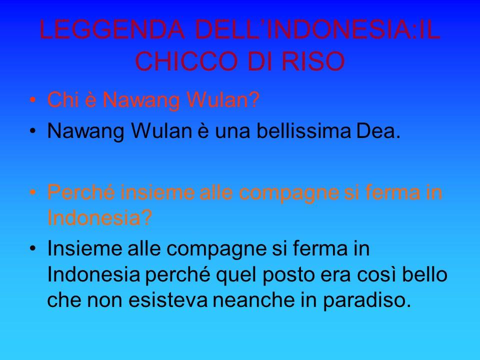 LEGGENDA DELLINDONESIA:IL CHICCO DI RISO Chi è Nawang Wulan? Nawang Wulan è una bellissima Dea. Perché insieme alle compagne si ferma in Indonesia? In