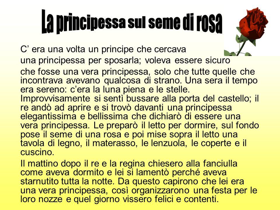 C era una volta un principe che cercava una principessa per sposarla; voleva essere sicuro che fosse una vera principessa, solo che tutte quelle che i