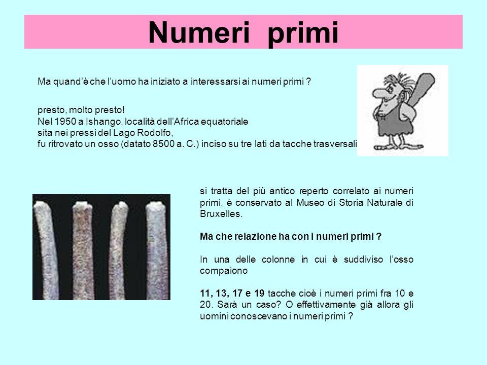 Numeri primi Ma quandè che luomo ha iniziato a interessarsi ai numeri primi ? presto, molto presto! Nel 1950 a Ishango, località dellAfrica equatorial