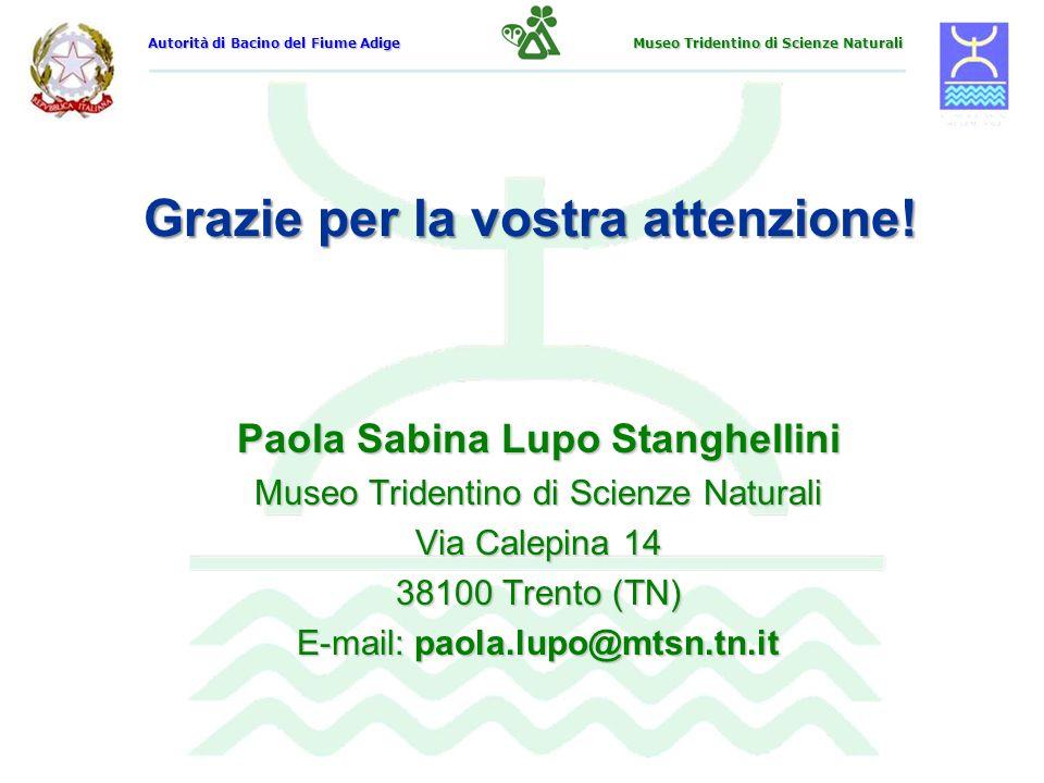 Grazie per la vostra attenzione! Paola Sabina Lupo Stanghellini Museo Tridentino di Scienze Naturali Via Calepina 14 38100 Trento (TN) E-mail: paola.l