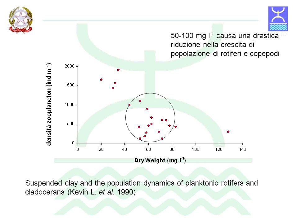 Suspended clay and the population dynamics of planktonic rotifers and cladocerans (Kevin L. et al. 1990) 50-100 mg l -1 causa una drastica riduzione n