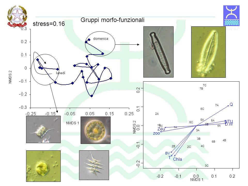 Portata Torbidità Lanalisi statistica multivariata della comunità fitoplanctonica mette in evidenza come le variabili fisiche siano i principali fattori in grado di selezionare anche le specie algali