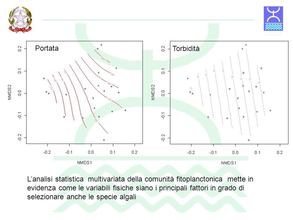 Le concentrazioni dei nutrienti algali non risultano mai essere limitanti per lo sviluppo del fitoplancton.