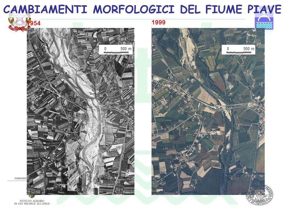 0500 m0 1999 1954 CAMBIAMENTI MORFOLOGICI DEL FIUME PIAVE