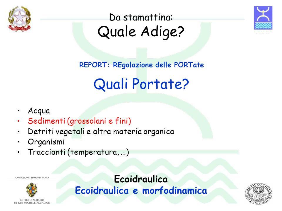 Da stamattina: Quale Adige? Acqua Sedimenti (grossolani e fini) Detriti vegetali e altra materia organica Organismi Traccianti (temperatura, …) Quali