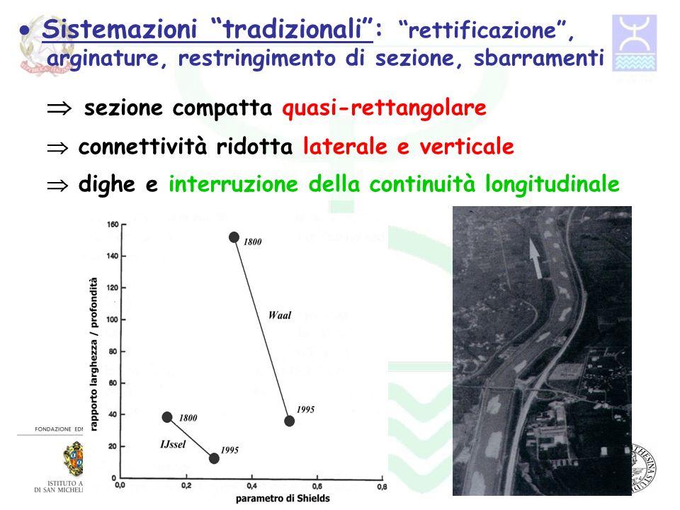 Esempio: morfologia fluviale e hydropeaking Ruolo della forma della sezione nellabbattere gli effetti di hydropeaking Potenziale hotspot di biodiversità Portate non formative Biotopo della Rupe Morfologia pluricurlsale