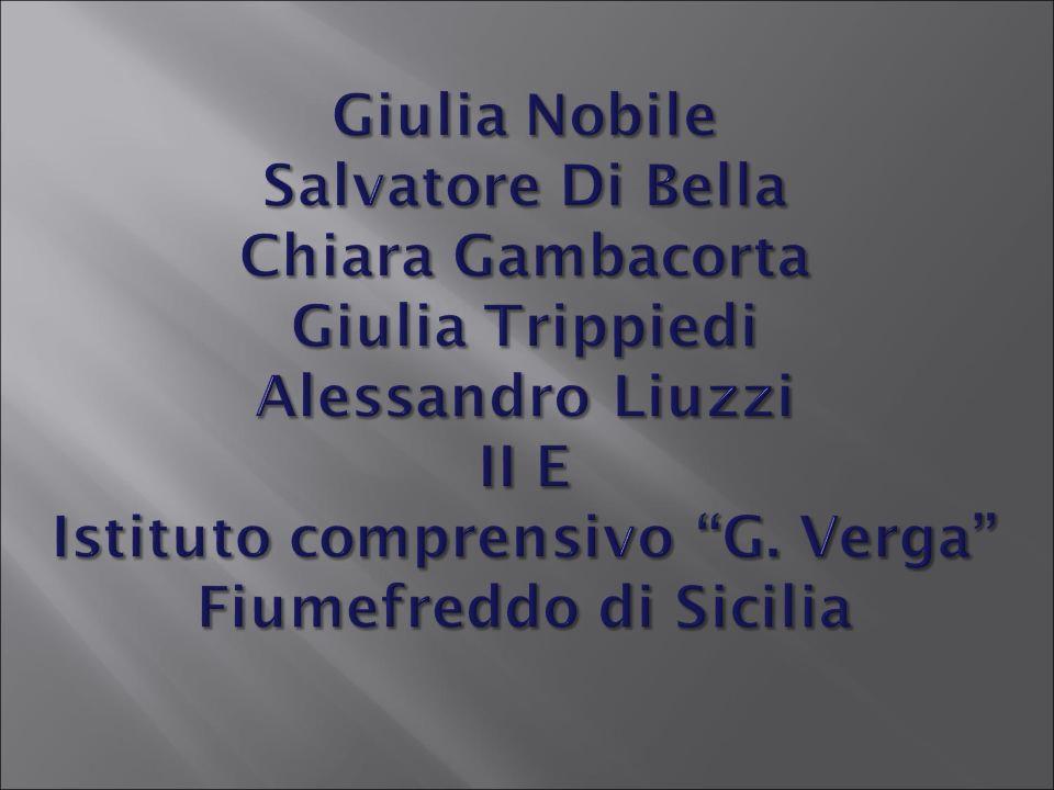 Giulia Nobile Salvatore Di Bella Chiara Gambacorta Giulia Trippiedi Alessandro Liuzzi II E Istituto comprensivo G. Verga Fiumefreddo di Sicilia