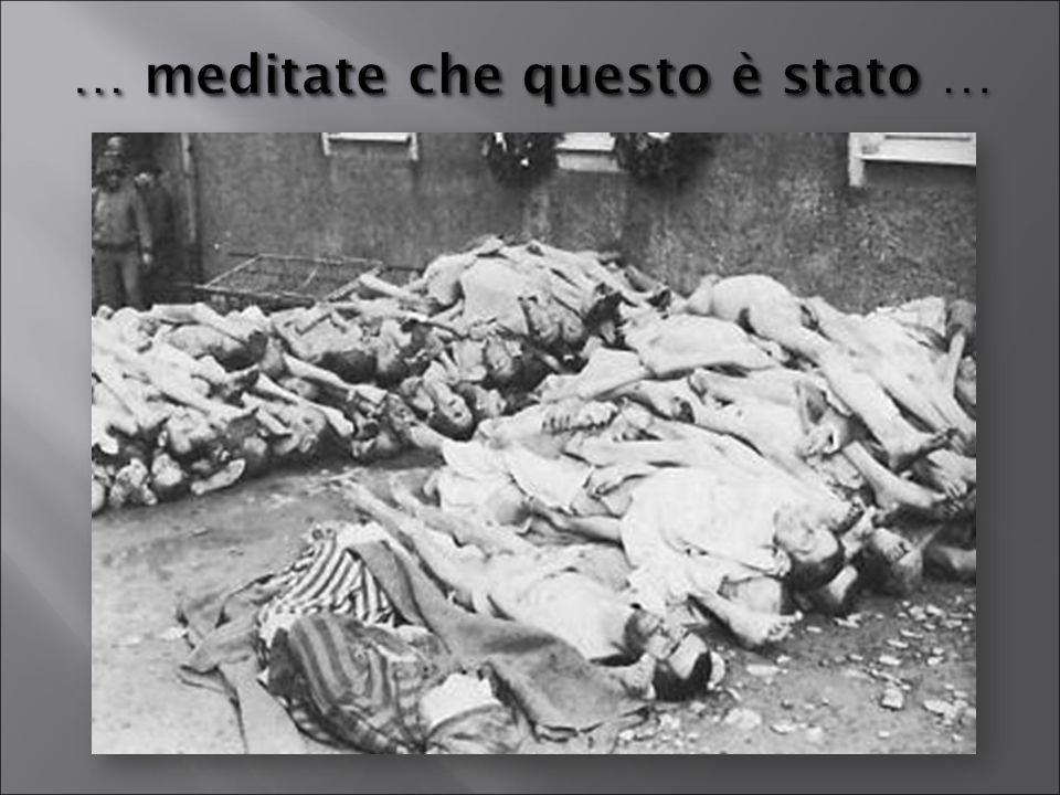 … meditate che questo è stato … meditate che questo è stato …