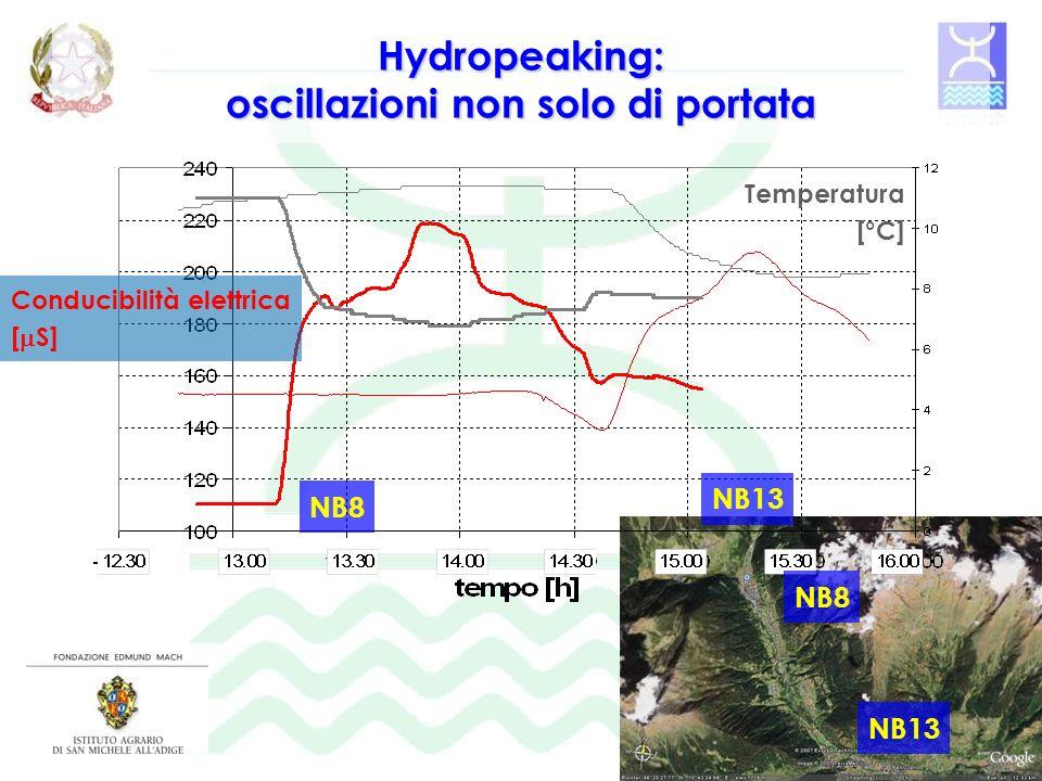 Hydropeaking: oscillazioni non solo di portata Conducibilità elettrica [ S] Temperatura [°C] NB8 NB13 NB8