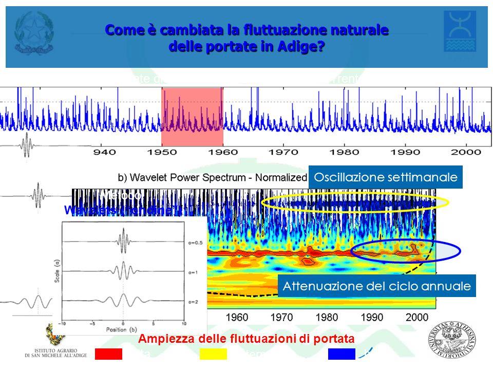 Come è cambiata la fluttuazione naturale delle portate in Adige? Portate giornaliere al Ponte S. Lorenzo (Trento) Metodo: Wavelets (ondine) frequenza