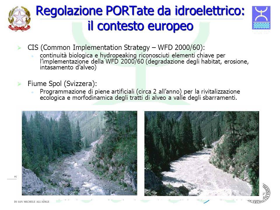Regolazione PORTate da idroelettrico: il contesto europeo CIS (Common Implementation Strategy – WFD 2000/60): CIS (Common Implementation Strategy – WF